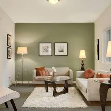 accent wall living design ideas
