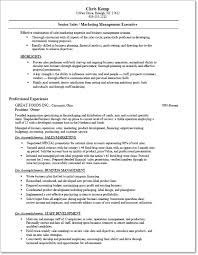 resume transition from self employed back to employee .