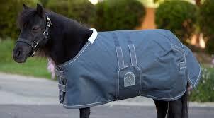 eous lightweight foal mini blanket