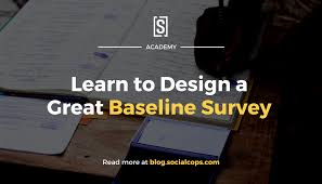 Baseline Survey Design