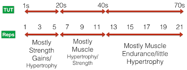 the first few reps are for strength the last few reps are for muscle growth
