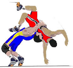 Image result for wrestling