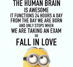 Love Funny Quotes Unique Download Funny Love Quotes Ryancowan Quotes