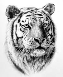 Pin Uživatele Anastasia Pišenkova Na Nástěnce Kreslim Tetování