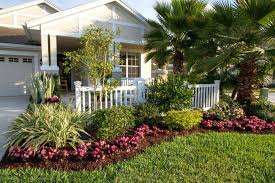 nice design florida landscape ideas
