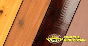 Australian Timber Oil On Cedar Mgstudio Co