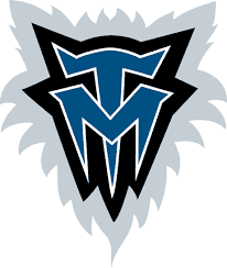 Minnesota Timberwolves Alternate Logo - National Basketball ...
