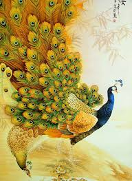 peacock wallpaper for mobile. Simple Peacock Latest Mobile Wallpapers With Peacock Wallpaper For