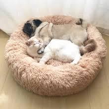 <b>Cat Beds</b> & Mats_Free shipping on <b>Cat Beds</b> & Mats in Cat Supplies ...