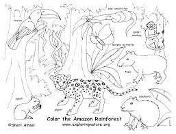 Coloring Pages Forest Animals Coloring Free Scary Dinosaur Coloring Pages Forest Animals Boa