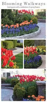 Are You Ready to Enjoy an AMAZING Bulb Garden Next Spring
