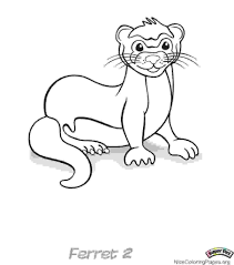 3 Ferret Drawing Coloring Page For Free Download On Ayoqqorg