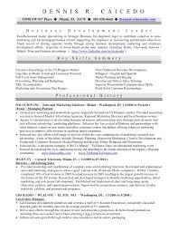 Business Owner Resume Inspiration 4915 Business Owner Resume Sample RESUMEDOCINFO