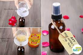 mix rose water and apple cider vinegar to make diy toner for oily skin