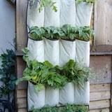 apartment patio garden. Few Things Are More Satisfying Than Growing Your Own Food. Frustrating Being A Garden Lover Trapped In Teeny-tiny Apartment . Patio