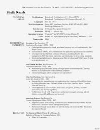 Entry Level Web Developer Resume Elegant Web Developer Resume