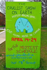 arc events animal rights collective blog animals