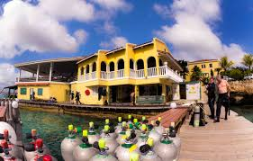 Image result for buddy dive bonaire island