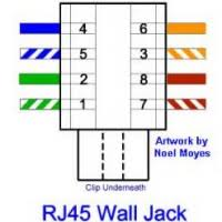 wiring diagram for cat5 wall plate wiring image cat 5 wiring diagram wall jack wiring diagram and hernes on wiring diagram for cat5 wall