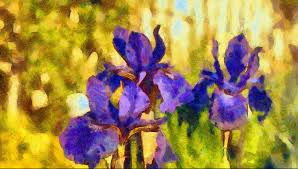 my own original digital painting of some irises flowers style van gogh