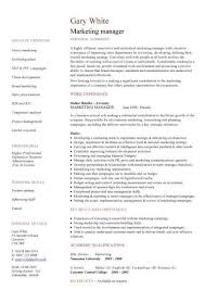 Brand Manager Resume Sample Best Of Marketing Manager Resume Template Examples Check Out Additional