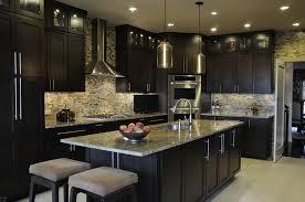 Dazzling Dark Kitchen Design Ideas With L Shape Black Kitchen ...