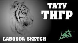 тату тигр Labooda Sketch