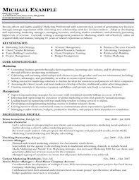 The 25+ best Functional resume template ideas on Pinterest Cv - core skills  resume