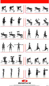 The Best Exercises With Dumbbells The Dumbbells Have Been