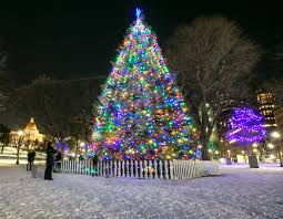 Christmas Lights Boston Area The Best Christmas Trees And Displays To See In Boston