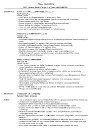 Sales Support Specialist Resume Samples Velvet Jobs