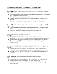 How To Make A Resume With No Work Experience How To Make A Resume With No Work Experience 38