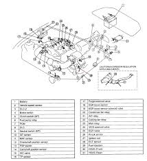 bosch o2 sensor wiring diagram 3 wire connector bosch discover 4 wire oxygen sensor schematic 2000 protege