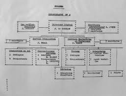 Cea Organization Chart Somarem Organizational Chart 1954 Courtesy Of The Archives