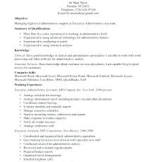 Executive Resumes Examples Executive Summary On Resume Executive
