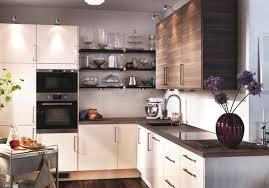 ikea kitchen sets furniture. Simple Sets IKEA Dream Kitchen  Complete Your Kitchen With IKEAu0027s FAKTUM Set In Ikea Sets Furniture U