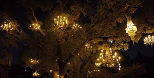 see the chandelier tree in silverlake