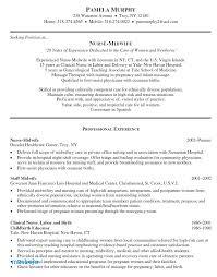 Nursing Student Resume Nursing Resume Objective Awesome