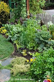 Pin by Lillian Rhodes on idees in 2020 | Vegetable garden design, Edible  garden, Edible landscaping