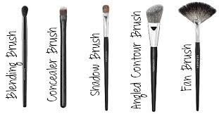 fit s makeup brushes 101