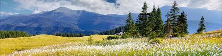 Украинские горы двухтысячники шесть вершин и Менчул guide  Украинские горы двухтысячники шесть вершин и Менчул
