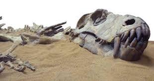 Nueva teoría explica por qué se extinguieron los dinosaurios. Esto reveló  un nuevo estudio