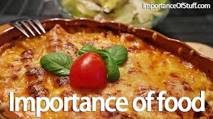 importance of food in our life essay and speech importance of food