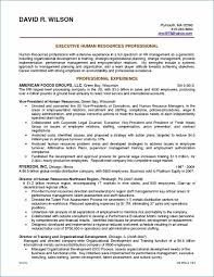 resume of financial analyst resume for financial analyst best of 40 beautiful business analyst