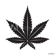 Fotografie Obraz Marijuana Vector Cannabis Leaf Weed Icon Logo