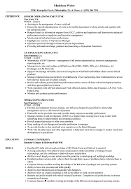 Executive Resume Operations Executive Resume Samples Velvet Jobs 42