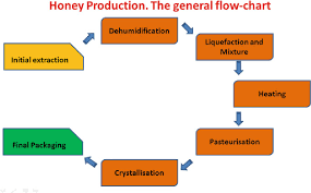 Honey Processing Flow Chart Pdf Chapter 2 Honey Processing Techniques And Treatments