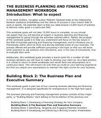 Business Plan Summary Sample Recent Business Summary Example All