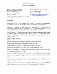 University Professor Resume Sample Resume Or Cv Sample Unique College Professor Resume Objective 18