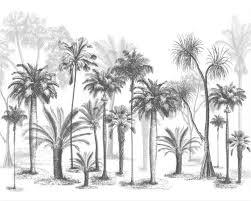 Aangepaste Behang Muurschildering Zwart En Wit Schets Tropische